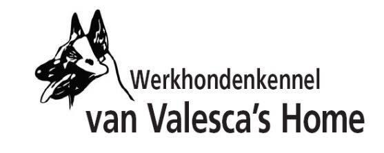 WERKHONDENKENNEL VAN VALESCA'S HOME